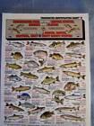 FRESHWATER FISH Identification ID Chart - Tightline Tightlines Publications #8