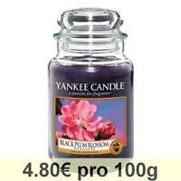 Yankee Candle Classic Gross Housewarmer, Black Plum Blossom Duftkerze Raum Duft