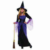 Women Purple Potion Witch Ladies Fancy Dress Cosplay Halloween Costume