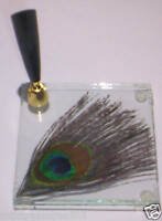PEACOCK FEATHER IN A GLASS BASE~PEN HOLDER/STAND