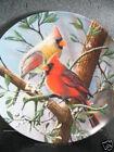 Knowles Kevin Daniel THE CARDINAL  Enclyclopaedia Britannica Birds  Ltd Ed Plate