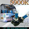 9006 12V 100WATT 5900K XENON HID LIGHT BULB LOW BEAM