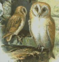 "Barn Owl 2 Complete Counted Cross Stitch Kit 8"" x 8.25"""