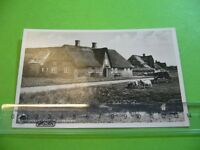202P01 AK Nordseeinsel SYLT Friesenhaus, um 1940