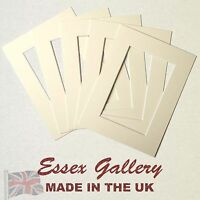 Picture And Photo Mounts IVORY / CREAM