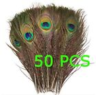 50pcs Natural Peacock Feathers Eyes About 10-12 Inches DIY Jewelry Decoration