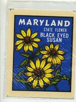 vtg maryland water decal state souvenir travel trailer novelty retro hot rod