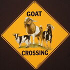 GOAT CROSSING Sign ALUMINUM decor goats picture painting art signs home wildlife