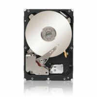 Seagate Constellation ES.3 4TB,Intern,7200RPM