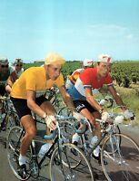 JACQUES ANQUETIL & CHARLY GAUL RARE COLOUR TOUR DE FRANCE POSTER