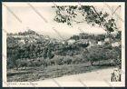 Siena Cetona cartolina B1797 SZG