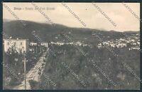 Lucca Barga cartolina C3226 SZI