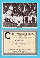COUNTY PRINT SERVICES - COUNTY  CRICKET  TEAM  CARD  -  SURREY  -  1901