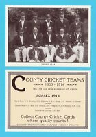 COUNTY PRINT SERVICES - COUNTY  CRICKET  TEAM  CARD  -  SUSSEX  -  1914