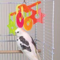 Brainy Bird Whirligig Series Bird Toy Stars/Circles NEW