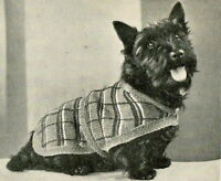 Vintage 1930s knitting pattern for terrier breed dog coat 14 inches in length