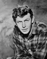 1960s 'Andy Griffith Show' ANDY GRIFFITH Glossy 8x10 Photo Actor Portrait