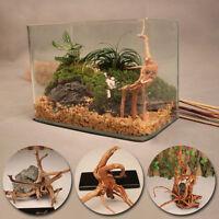 MOCRUX Driftwood Plants Wood Tree Trunk Fish Tank Decor Aquarium Decoration