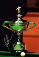 Ronnie O'Sullivan SIGNED Autograph Snooker World Champion Trophy Photo AFTAL COA