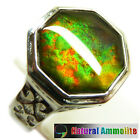 Multicolour Ammolite Sterling Silver Ring Size 7