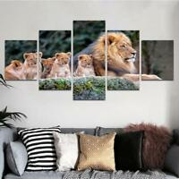 Wildlife Lion Family 5 Piece Canvas Art Wall Art Picture Painting Home Decor