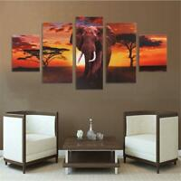 Elephant in Red Sunset Wildlife 5 Piece Canvas Art Print Picture Wall Decor