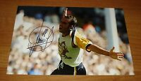 PAOLO DI CANIO HAND SIGNED AUTOGRAPH 12x8 SIGNATURE PHOTO SHEFFIELD WEDNESDAY