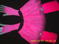 tu tu 80s dance fancy dress neon pink yellow hen night.