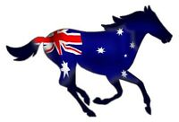 Aussie Horse  Size apr 100mm by 65 mmSET OF 3 TOP QUALITY DECAL MADE IN AUSTRALI