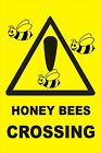 DANGER WARNING SAFETY SIGNS HONEY BEES CROSSING