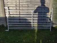 galvanised steel sheep hurdles