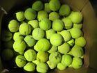 120 MIXED Tennis Balls WILSON PENN DUNLOP Dog Toy LOT