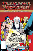 Dungeons & Dragons: Forgotten Realms Classics: v. 2 2011 IDW Graphic Novel