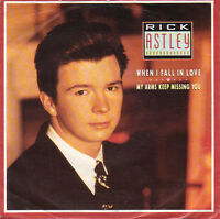 """RICK ASTLEY When I Fall In Love UK 7"""" single EXCELENT CONDITION VINYL RECORD"""