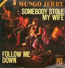 45T: Mungo Jerry: somebody stole my wife - follow me down. pye