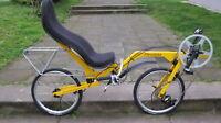 Recumbent bike Flevo-bike NEW