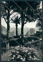 Napoli Capri Foto FG cartolina D6210 SZD