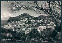 Napoli Capri Foto FG cartolina D6211 SZD