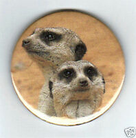 MEERCATS - FRIDGE MAGNET, KEYRING OR BADGE - NEW