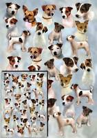 Parson/Jack Russell Terrier Wrapping Paper - Starprint