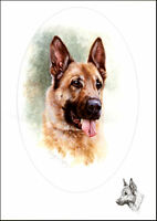 GSD ALSATIAN GERMAN SHEPHERD DOG FINE ART PRINT