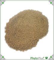 phyto plus catfish pellets  tropical fish 200g