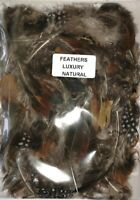 Natural Assorted Craft Feathers 5 gm Approx 30-35 feathers