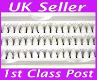 60 Stand 14mm Individual False Fake Eyelashes Premium Flare Corner Cluster Lash