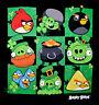 Angry Birds Graphic Tee St. Patrick's Day Themed T-shirt Irish NWT