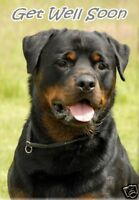 Rottweiler Get Well Soon Card by Starprint - No 1