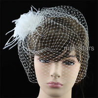 Bridal Birdcage Netting Veil w/ Feathers Ivory Fascinator Hair Flower T1565
