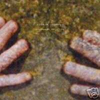 Richard Youngs - Autumn Response - LP Vinyl //// Neu & OVP