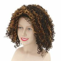 MEL B Scary Spice Girl Diva Pop Fancy Dress Costume Brown Curly WIG
