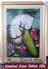 Counted Cross Stitch Kit - Beautiful Peacock In Forest
